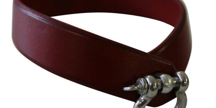 Halsband Château Maréchal rouge, 49,00 €